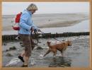 Bewegung mit Hund